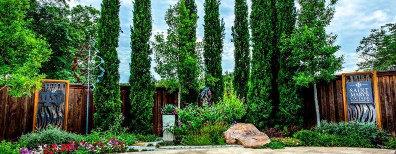 Richardson, Texas Landscape Designer
