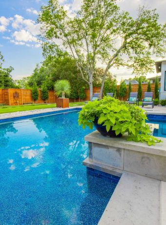 dallas-texas-pool-landscaping