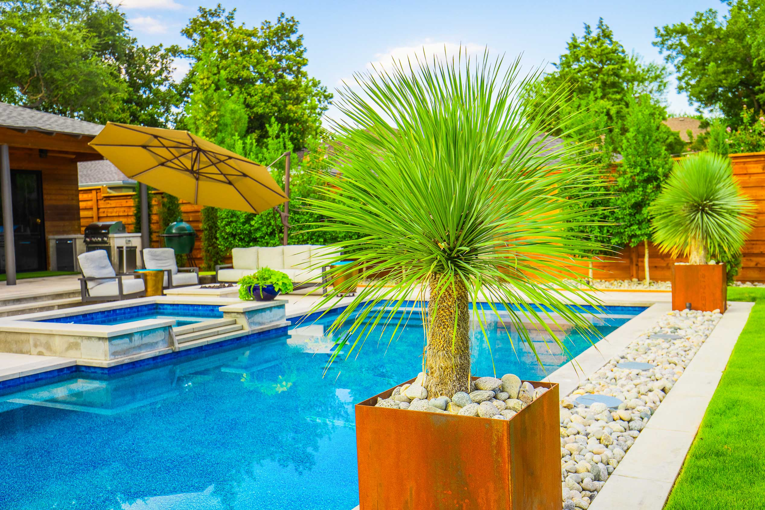 richardson-texas-pool-landscaping