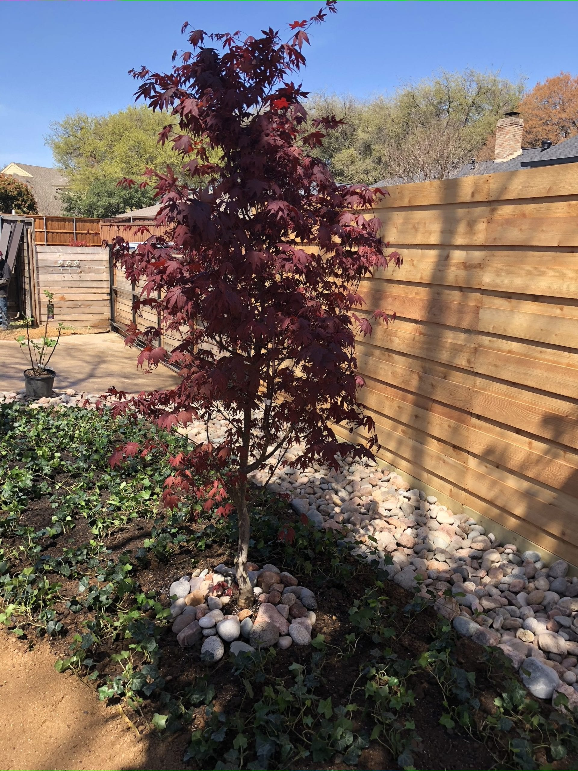 dallas_landscaping_company9